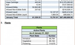2021 01 31 MRA PotProductSales Jan 2021